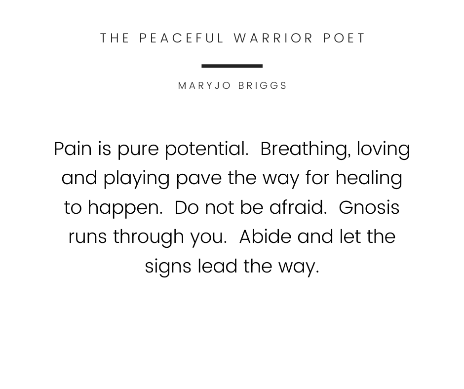 The Peaceful Warrior Poet